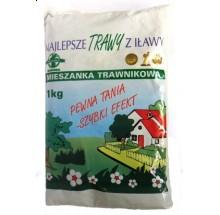 ROLIMPEX MIESZANKA TRAWNIKOWA SZYBKI EFEKT - 1kg