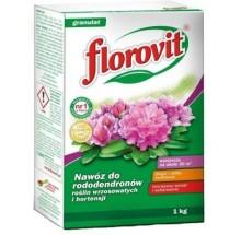 FLOROVIT DO RODODENDRONÓW KARTON 1KG
