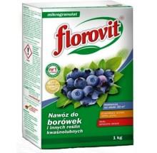 FLOROVIT BORÓWKA KARTON 1KG