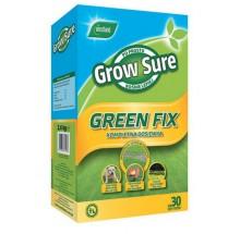 WEST.TRAWA GREEN FIX KARTON 2,4KG